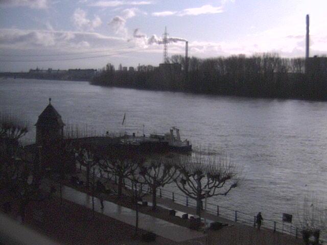 Rhein Biebrich Anlegestelle Fähre Tamara